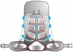 Anatomic NT suspension system in Vaude backpacks