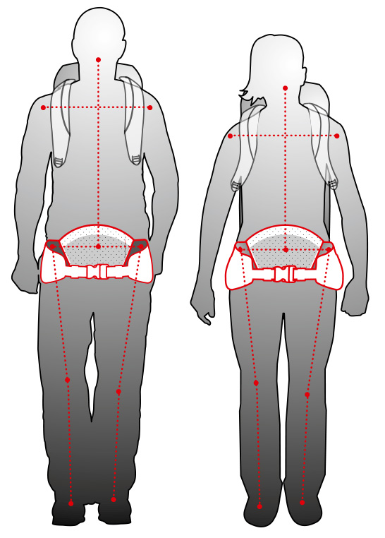 Diferencias del cinturón lumbar entre hombre y mujer